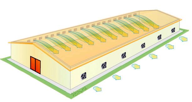 Поперечная схема вентиляции птицефабрик